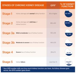 Kidney Function Estimation: Table of CKD stages, GFR number and & of kidney function (Source: National Kidney Foundation)